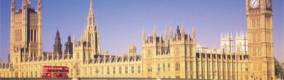 Westminster showcase for animal replacement research