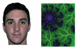 Two of the images that test subjects saw as they assessed others' expertise