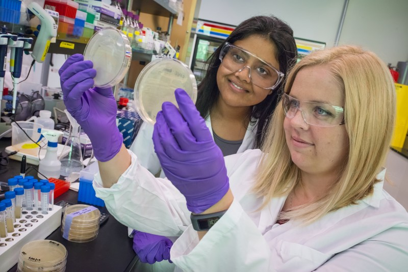 Aindrila Mukhopadhyay (left) and Heather Jensen were part of a JBEI team that id