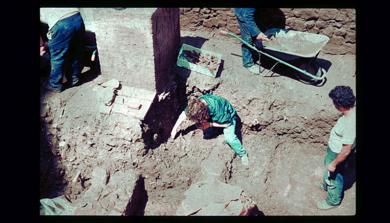 The excavation of the collective grave. All in all, researchers have collected D
