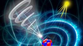The capture of a twisted electron from an ion results in the excitation of the n