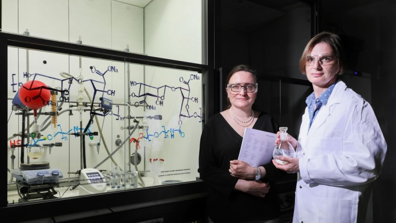 With the help of the TTO (Natalia Giovannini on the left), a hydrogel developed