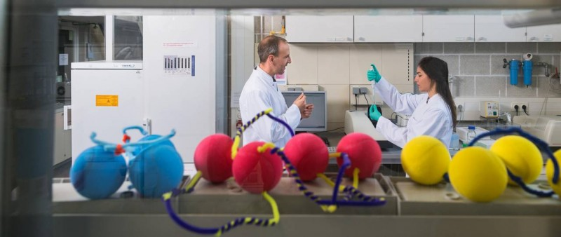 Oliver Lieleg and PhD student Ceren Kimna use balls and pipe cleaners in differe