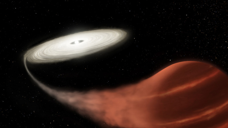 An artist's impression of a vampire system. Image credit: NASA and L. Husta