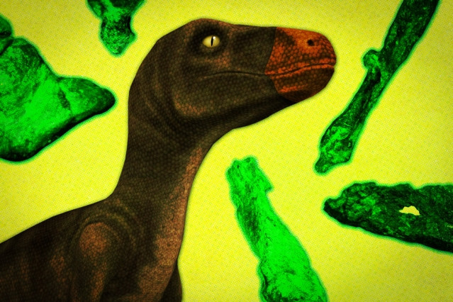 The classic dinosaur family tree has two subdivisions of early dinosaurs at its