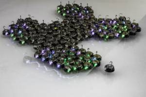 The robots used during the experiments. The shape of this particular swarm is a