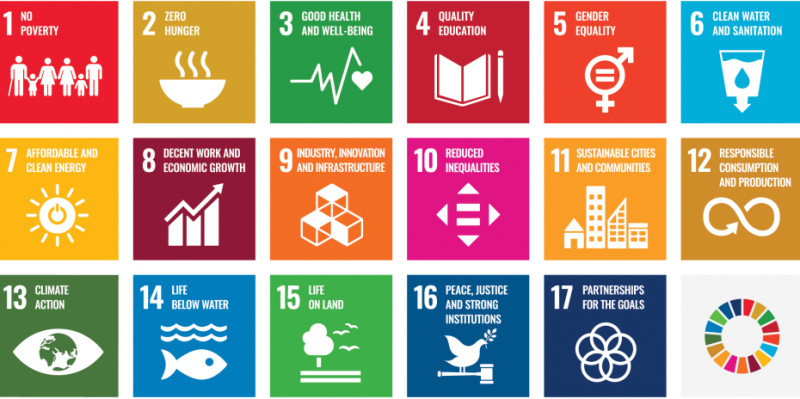 The 17 Sustainability Goals of the 2030 Agenda. (Image: un.org)