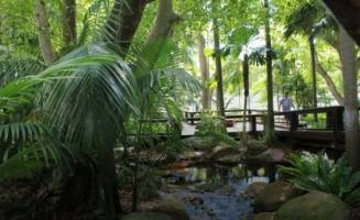 Southbank's Rain Bank in Brisbane