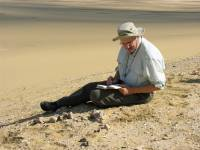 U-M paleontologist Philip Gingerich recording information at the Aegicetus site