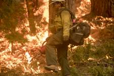 U.S. Forest Service prescribed burn in California's Sierra National Forest. (Ima